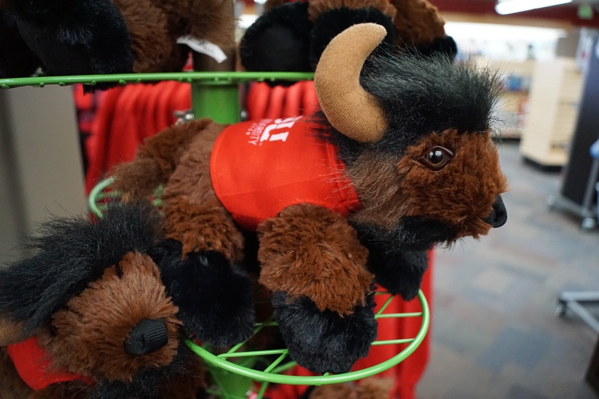 The stuffed bison is one of the many new merchandise in the DSU Bookstore. Merchandising has been up since the rollout of the Trailblazer identity one year ago. Photos by Alexis Winward.